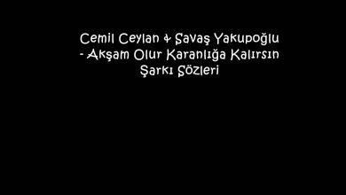 Photo of Cemil Ceylan & Savaş Yakupoğlu – Akşam Olur Karanlığa Kalırsın Şarkı Sözleri