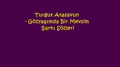Photo of Turgut Atasavun – Gözyaşımda Bir Mevsim Şarkı Sözleri
