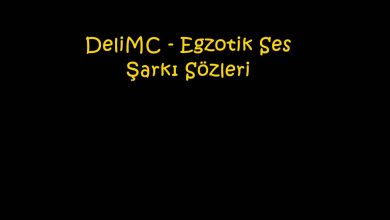 Photo of DeliMC – Egzotik Ses Şarkı Sözleri