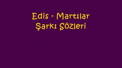 Photo of Edis – Martılar Şarkı Sözleri