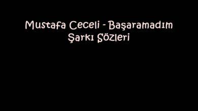Photo of Mustafa Ceceli – Başaramadım Şarkı Sözleri
