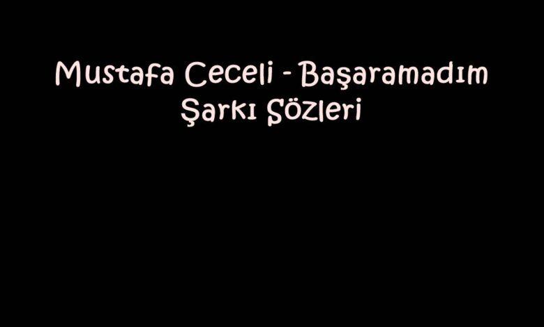 Mustafa Ceceli - Başaramadım Şarkı Sözleri