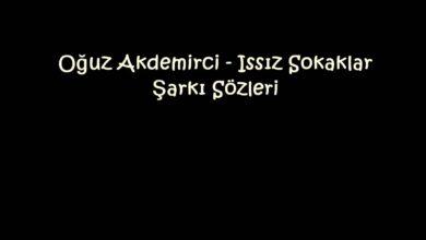 Photo of Oğuz Akdemirci – Issız Sokaklar Şarkı Sözleri
