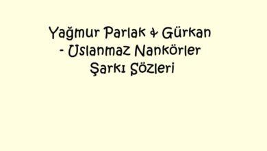Photo of Yağmur Parlak & Gürkan – Uslanmaz Nankörler Şarkı Sözleri
