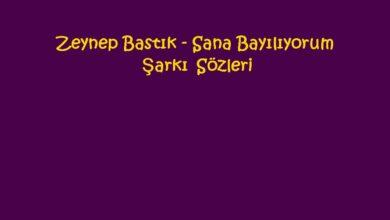 Photo of Zeynep Bastık – Sana Bayılıyorum Şarkı Sözleri