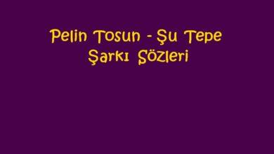 Photo of Pelin Tosun – Şu Tepe Şarkı Sözleri
